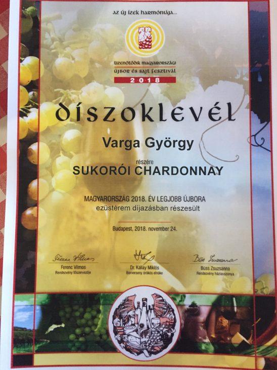 Varga György és a Csóbor pincészet sikere